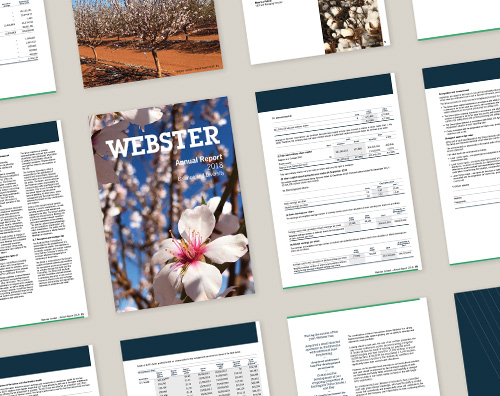 Webster Annual Report 2018 – thumbnail showing cover design and pages with financial tables.